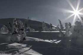 Tom Ingebretson - Vinter