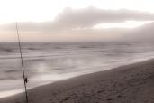 Vinterfiske på solkysten