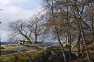 Kari Eng - Vårslepp