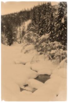 Tom Ingebretson- Inn i den kalde elven