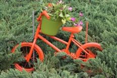 Benny Berget - Sykkel i det grønne
