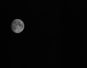 Halvor Roxrud-Månen