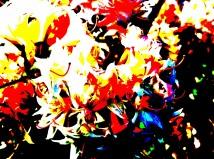 Inger-Johanne Marheim - Form og farge