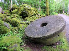 Solveig Olsberg - Møllehjul