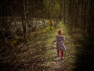 Tore Johan Birkeland - Tur i skogen