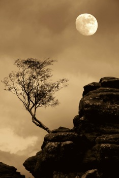 Benny Berget - Tre i måneskinn