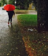 Bjørn Aaslie - Rød i Regn