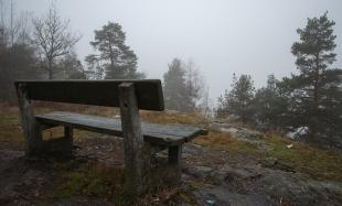 Halvor Roxrud - Tåkesyn