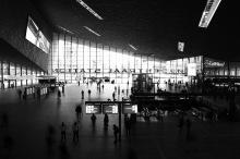 Lara Teso- Rotterdam Centraal