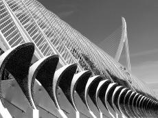 Solveig Olsberg-Valencia