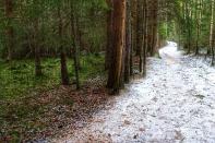 Arnt Lerheim - Vinterveien