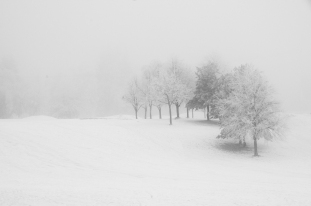 Vintertåke