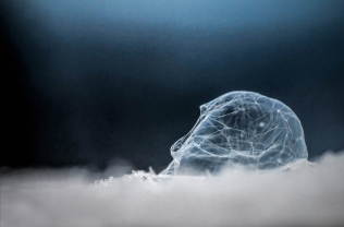 Ragne - Når såpebobla sprekker