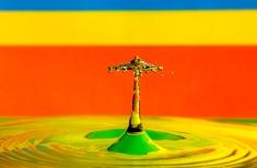 Ricardo Rodrigues - Splash Photography