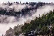 Snøsmelting på Håøya