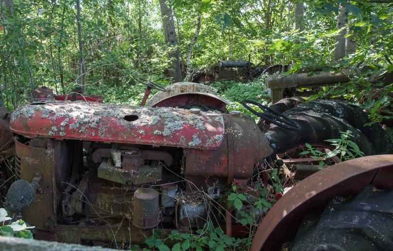 Halvor Roxrud- Skogsmaskiner